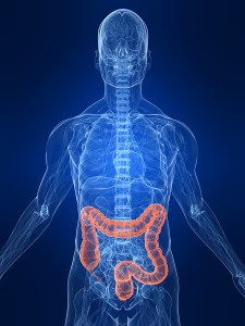 bigstock_Highlighted_Colon_3730501